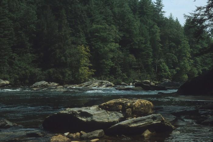 Aucun des acteurs n'avaient descendu la rivière Chattooga avant le tournageCrédits