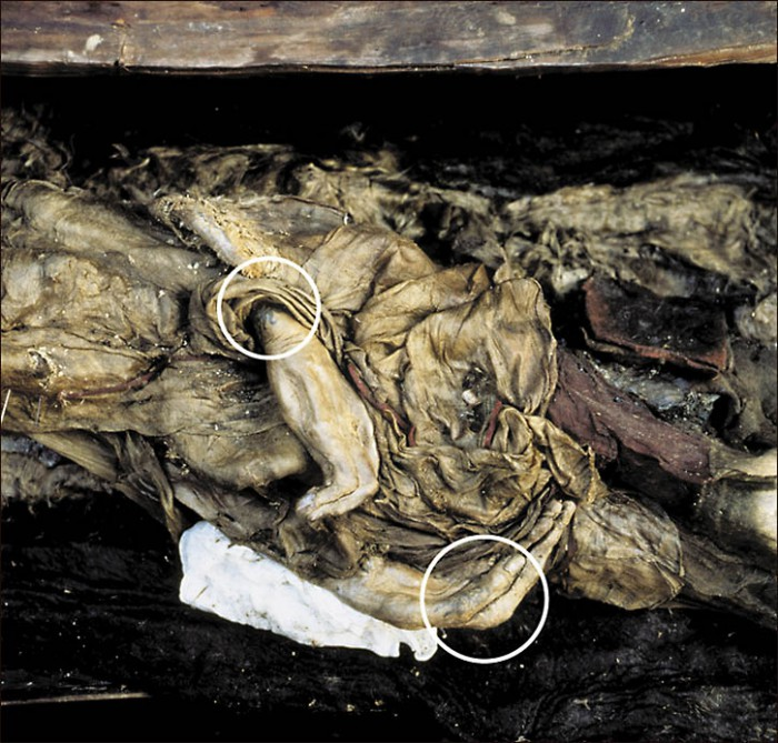 princess of Ukok mummy, with marked tattoo on her arm - credit Siberian Times, queries Will Stewart 007 985 998 94 00