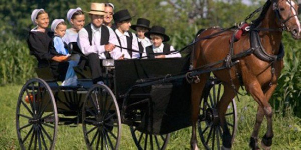 Une mutation rare permettrait aux Amish de vivre plus longtemps