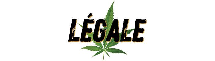 02-legale