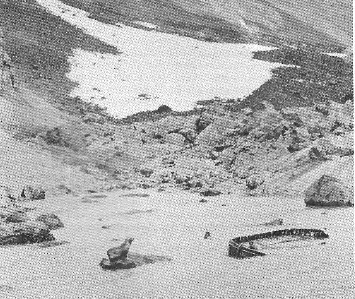 MystèreLe mystérieux canot de sauvetage n'intrigue pas que les habitants de l'île