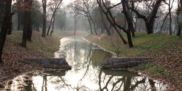 confucius-ulyces-23.jpg