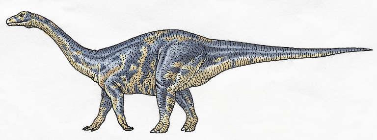 dk-images-adult-lufengosaurus20115203