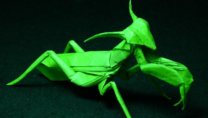 maître-origami-ulyces03