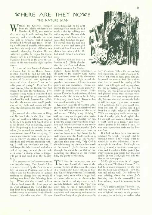 Le New Yorker révèle le scandale Crédits : The New Yorker