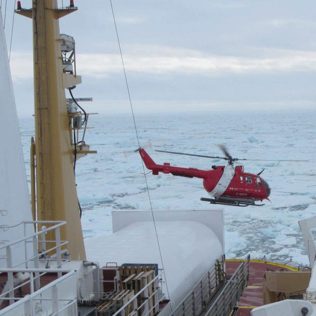 Plusieurs appareils ont étés envoyés pour retrouver le piloteCrédits : Canadian Coast Guard