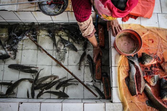 Une femme Shan travaillant sur le marchéCrédits : Adam Ramsey