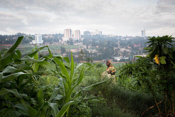 L'université Kepler se situe à Kigali, la capitale du paysCrédits : Juan Herrero