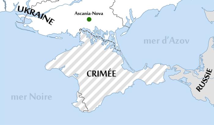 ulyces-ascanianova-map