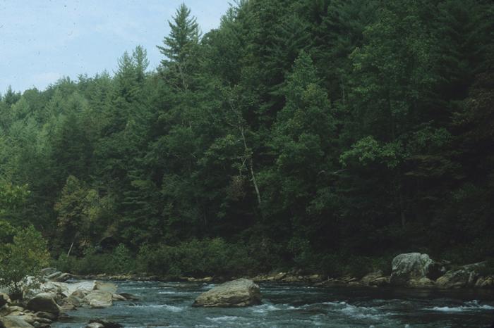 La rivière Chattooga, dans l'Etat de GéorgieCrédits
