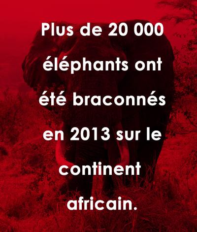 ulyces-extinct-07