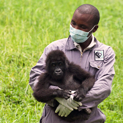 ulyces-gorillawars-04