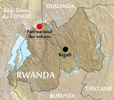 ulyces-gorillawars-map