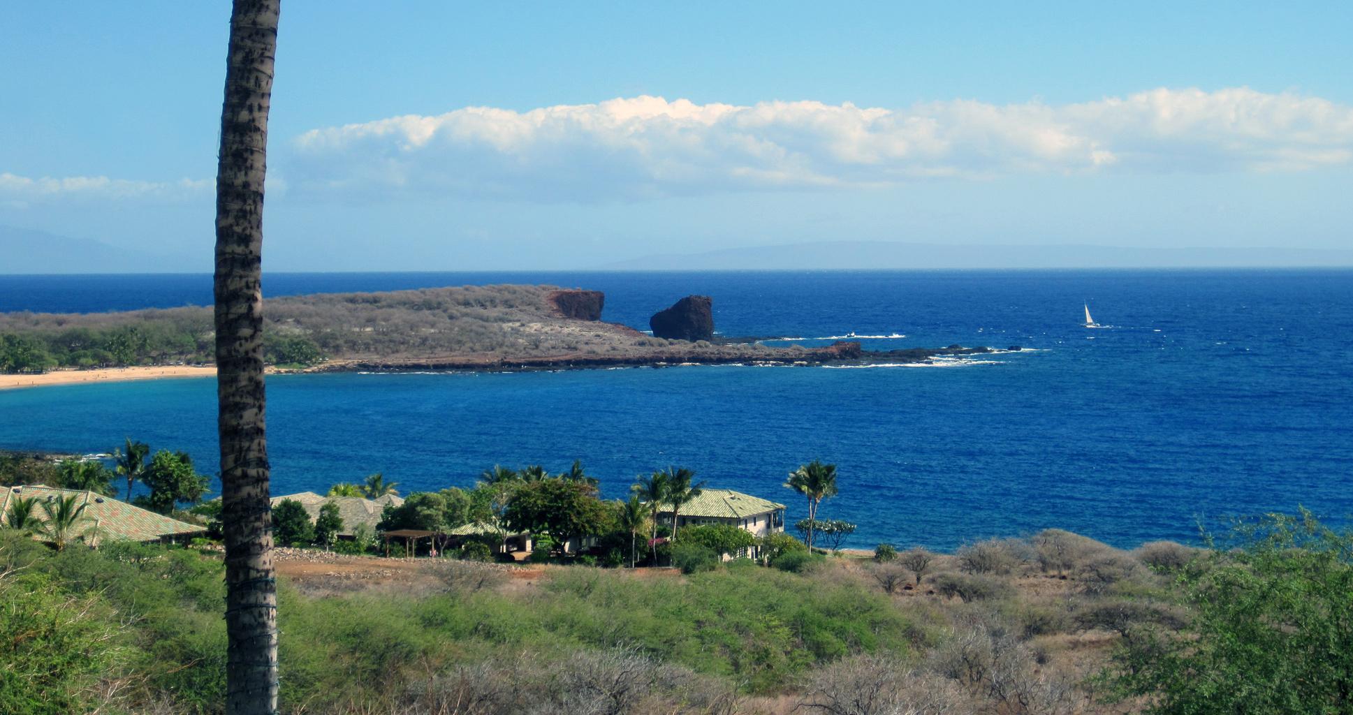 Le milliardaire qui jouait à Dieu sur une île hawaïenne