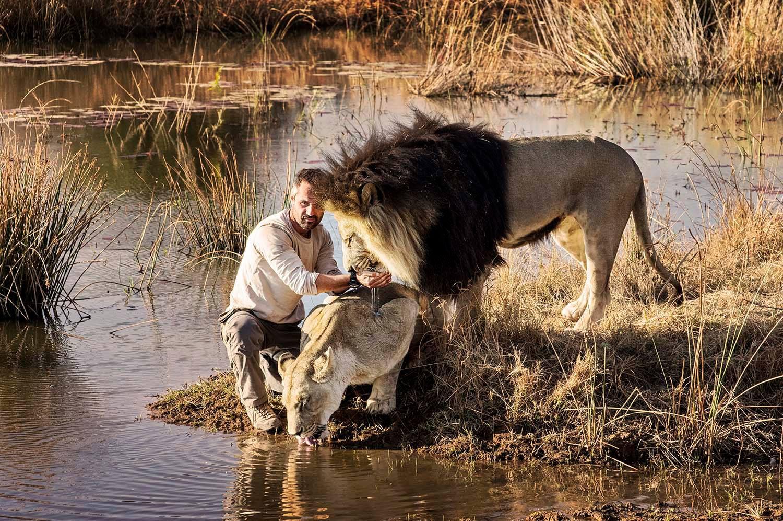 ulyces-lionwhisperer-09