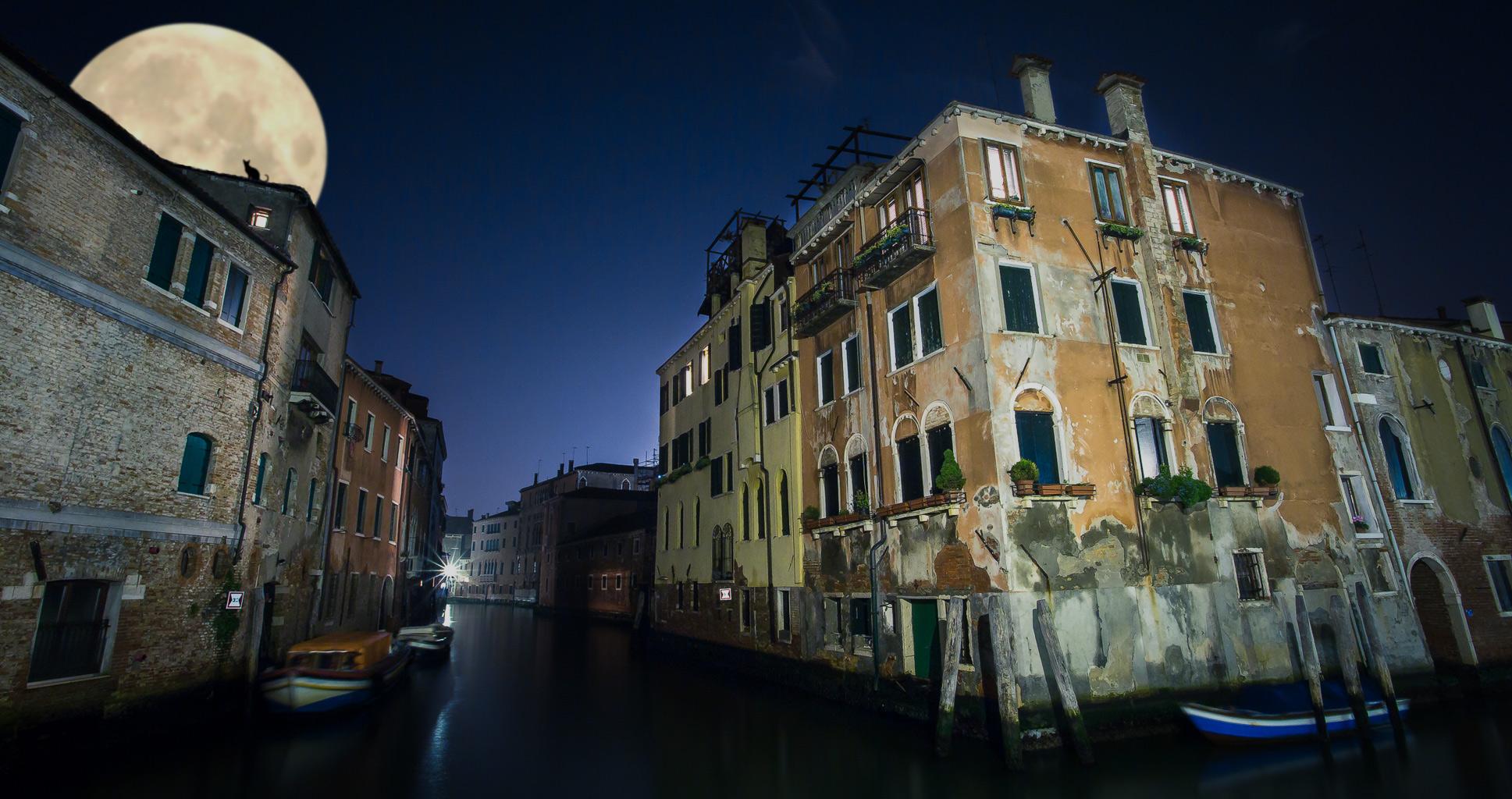Les aventures de Pipino, le plus grand cambrioleur de Venise