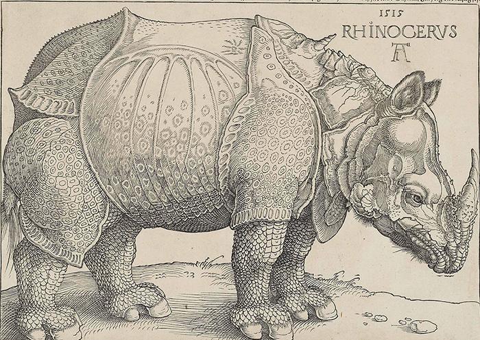ulyces-rhino-08
