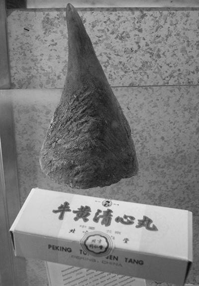 ulyces-rhino-15