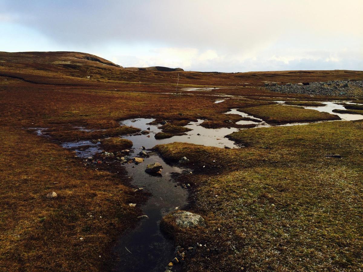 ulyces-vikingshetland-06