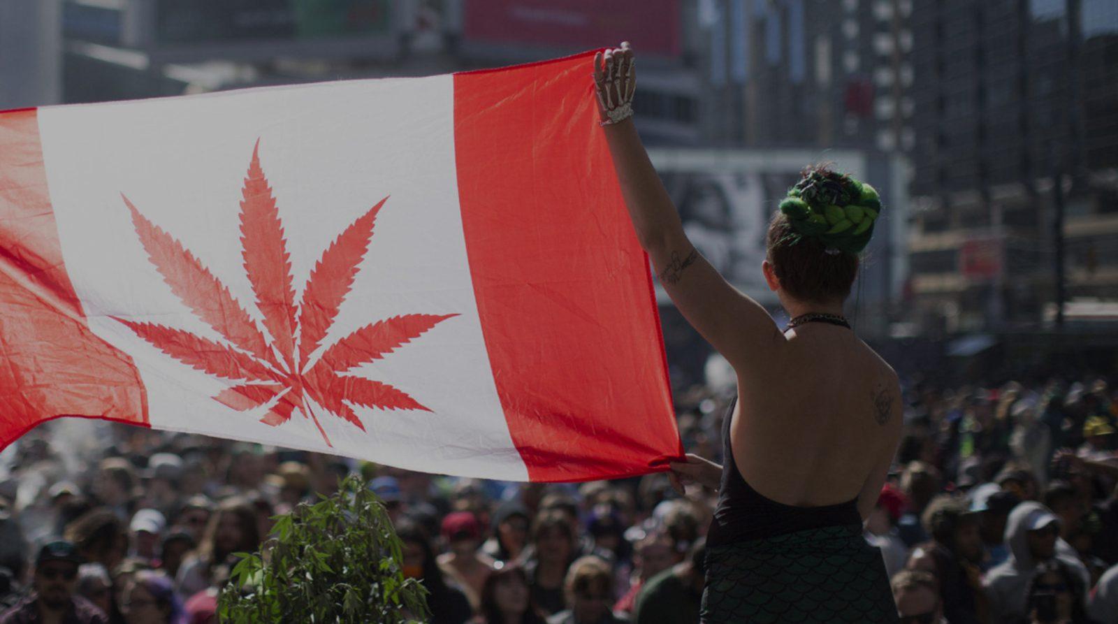 Comment le Canada a légalisé le cannabis