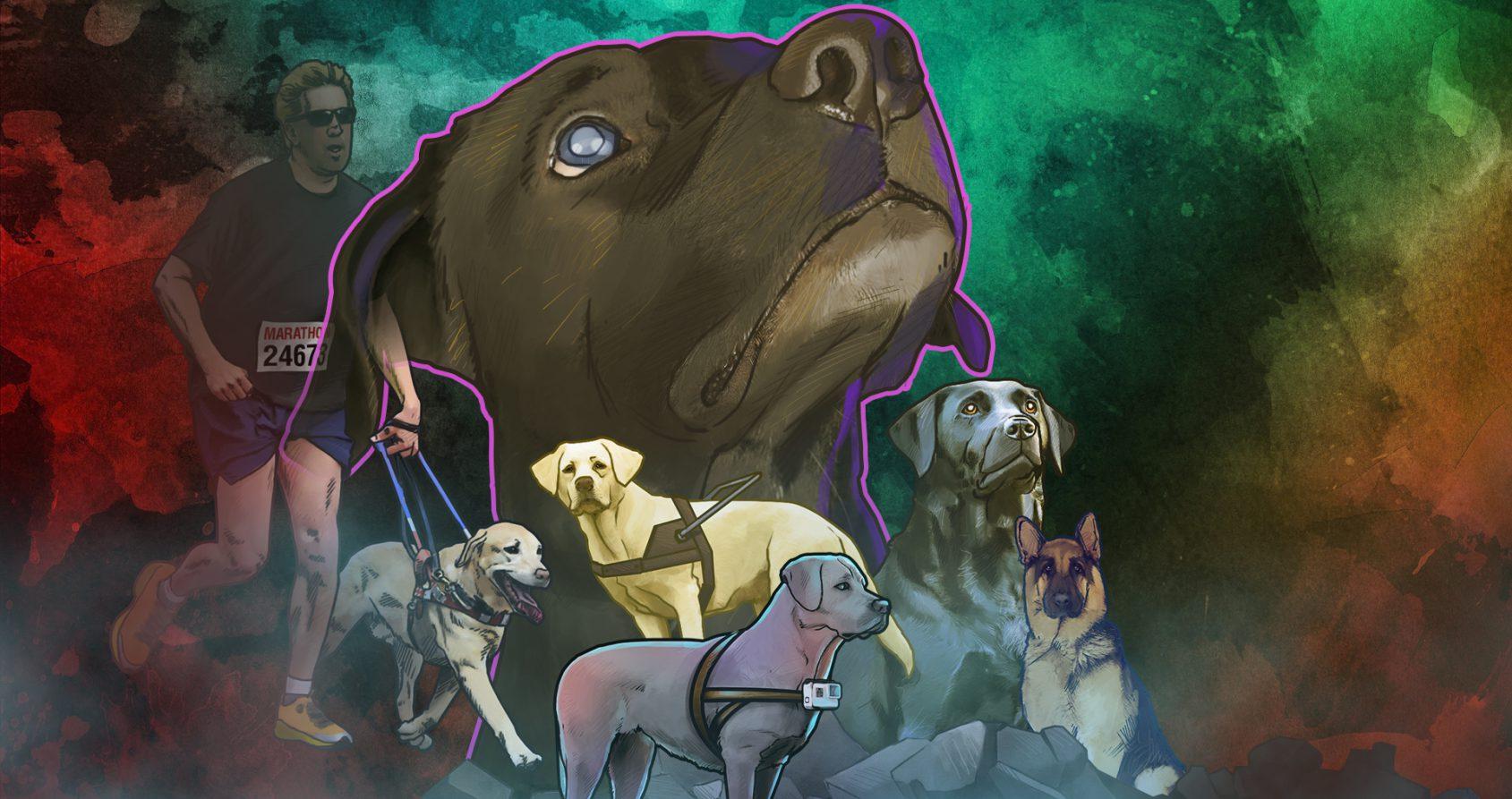 Chiens héros: 6 incroyables histoires de chiens guides