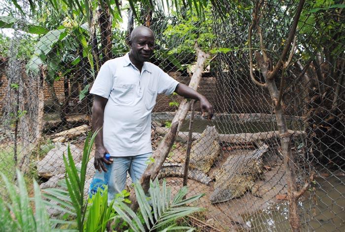 Cet homme abrite 45 crocodiles dans son jardin pour les - Quand mettre du fumier dans son jardin ...
